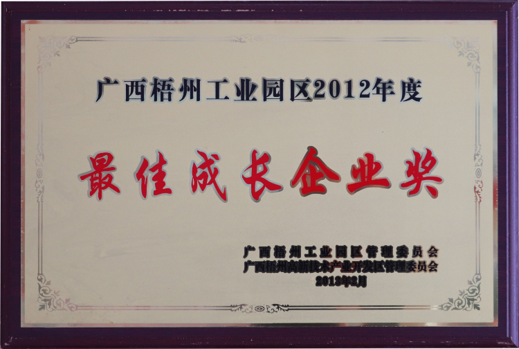 2012年度最佳成长企业奖