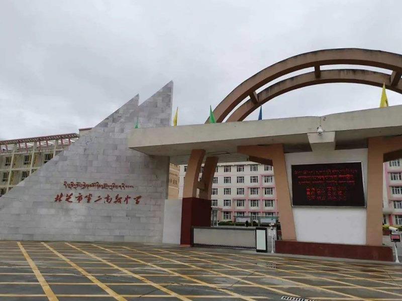 linzhidiergaojizhongxue