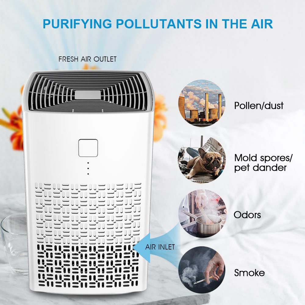UV Air Purifiers for Home, Portable personal Air Cleaner for Allergies and Pets, Smoke (AM-120B)