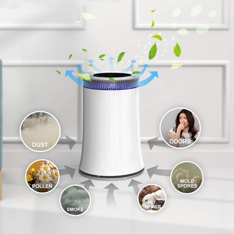 HEPA Air Purifiers for Home, Bedroom and Office, Night Light & Timer & Air Quality Detection  (AM-150B)