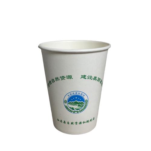 甘蔗漿紙杯