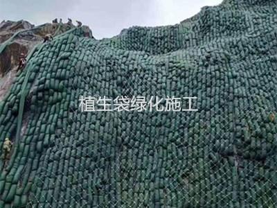 植生袋绿化施工