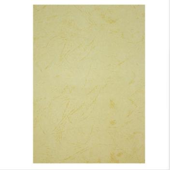 鑫风云 装订封面皮纹纸 100张/包 A4 230G 米黄色