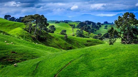 纯净新西兰之旅