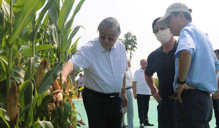 联办研究院专家考察襄大农业