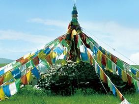 蒙古族自治县前郭尔罗斯自然资源局