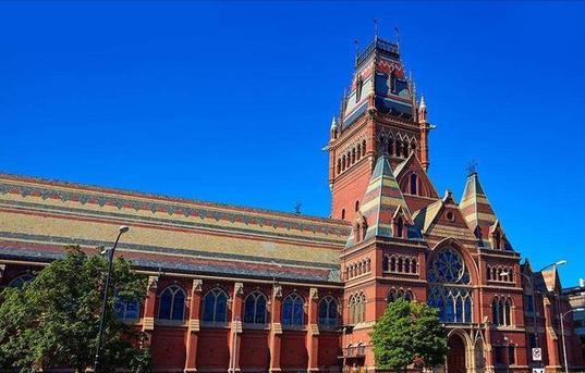 3哈弗大學