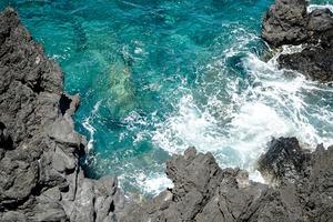冰岛Star-Oddi又有新发现- 不同盐度将影响蛤蜊的活动和行为