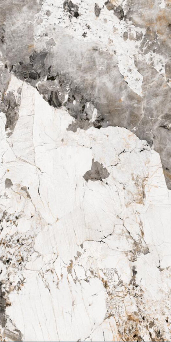 鹿跃岩板LY1224924(1200*2400)潘多拉