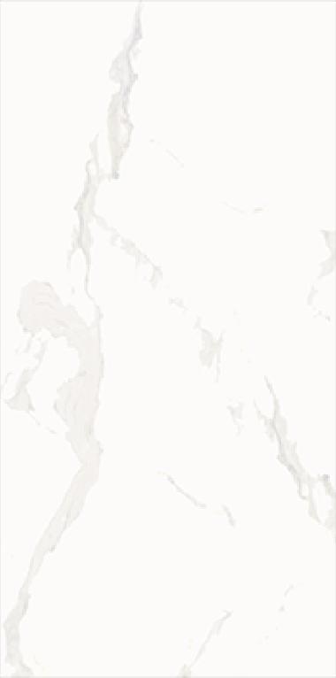 鹿跃全抛釉LY126C001(600X1200)(一石4面)