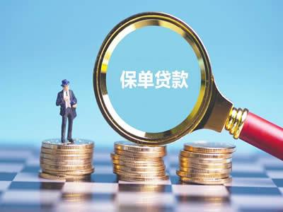 天津保单信用贷款