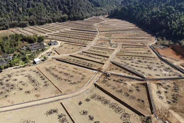 广东省现有耕地提质改造项目土壤改良工程