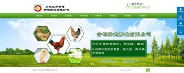 石家庄市吉母种鸡孵化有限公司