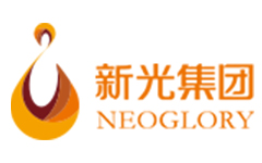 新光控股集团有限公司