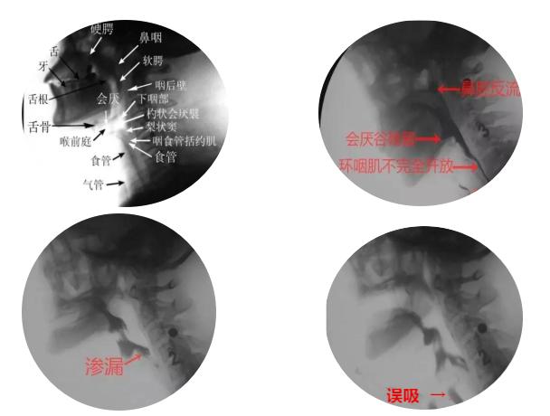 微信图片_20210416143752