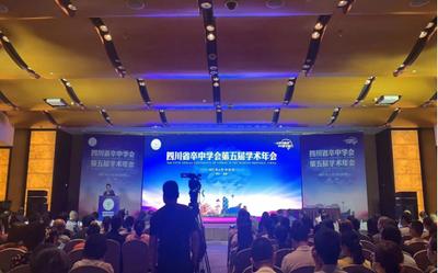 我院神经内科护理循证个案在四川省卒中年会上分享发言