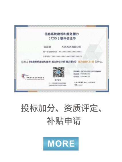 信息系統建設和服務能力(CS)