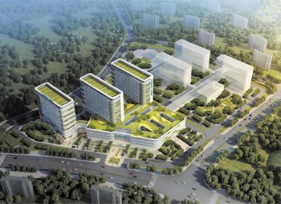 龙岗区第二人民医院迁址重建工程(水径地块)项目