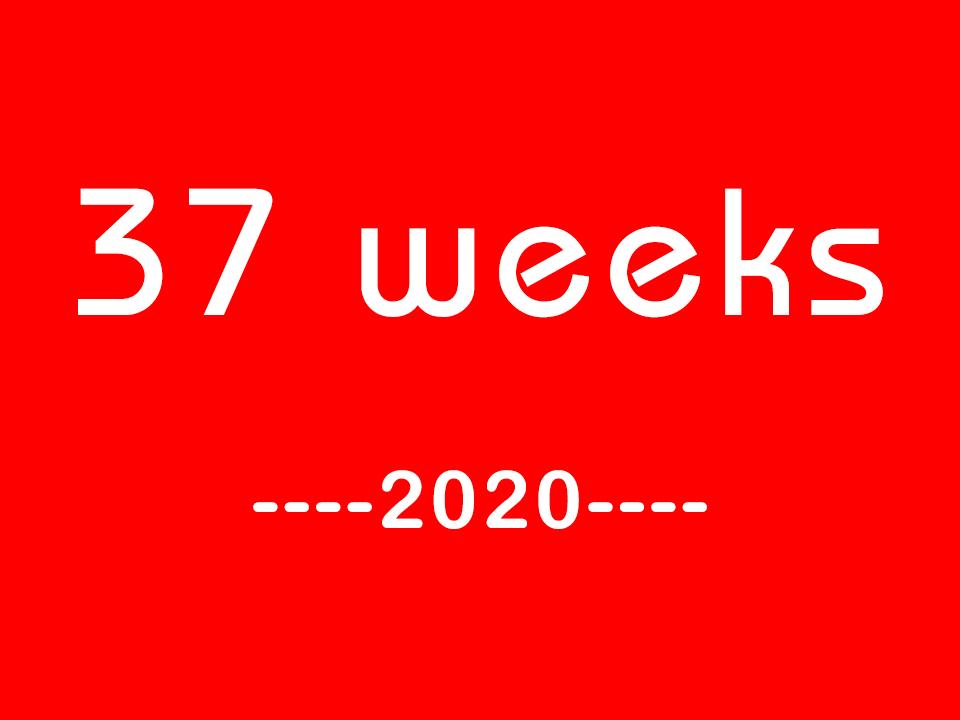 而为网案件观察:2020年37周汇总