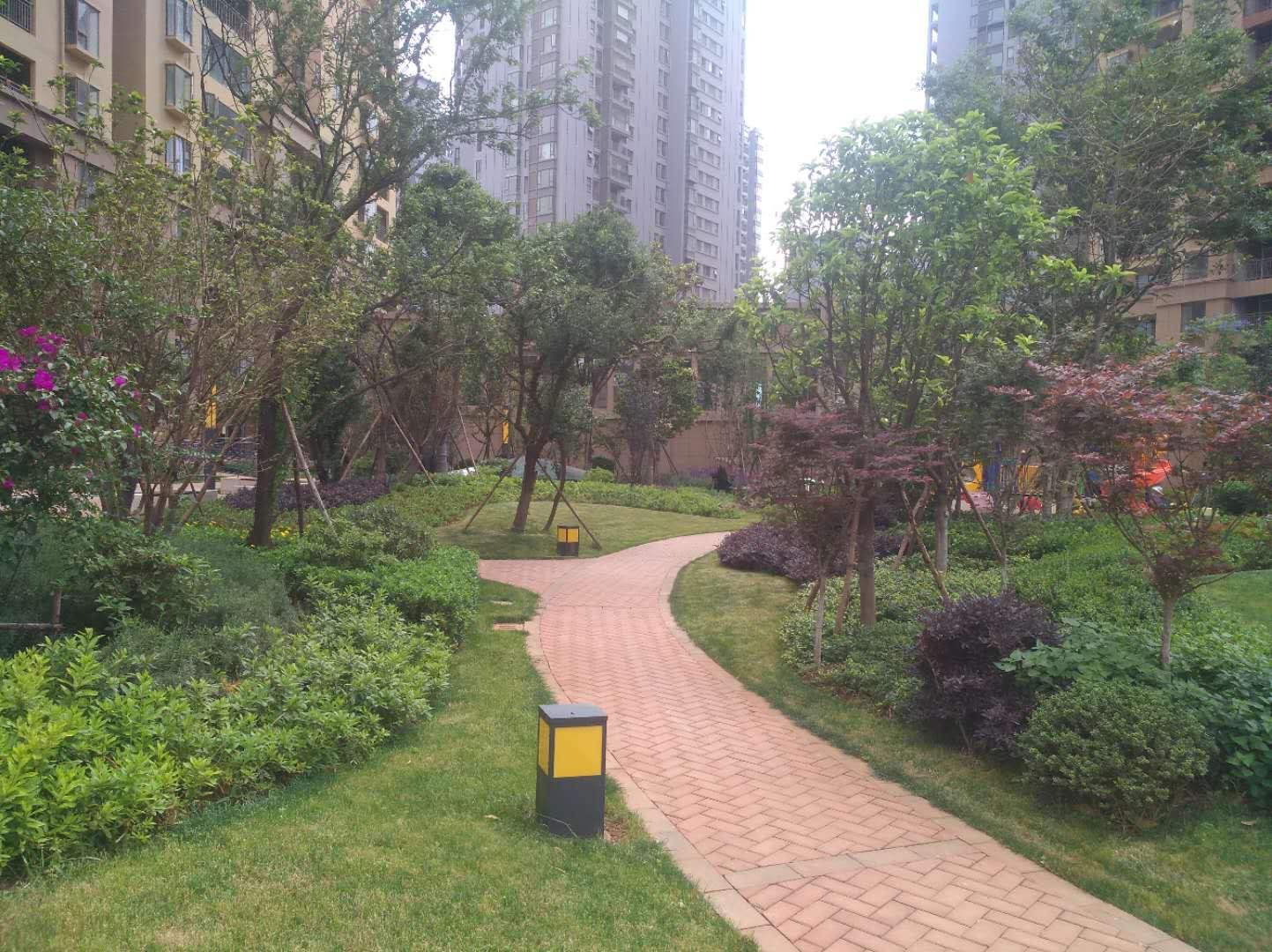 大理外灘名著景觀綠化工程
