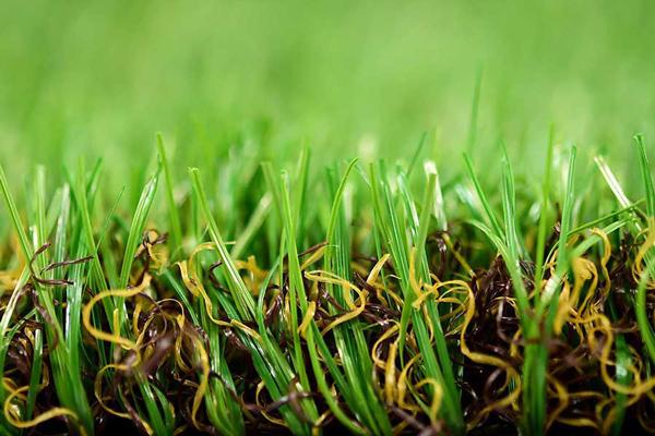 景观自制草坪