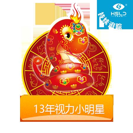 2013年华视零度视力小明星