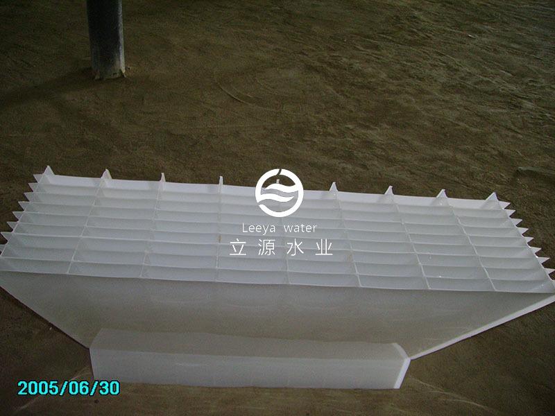 2005年拍摄的斜板照片
