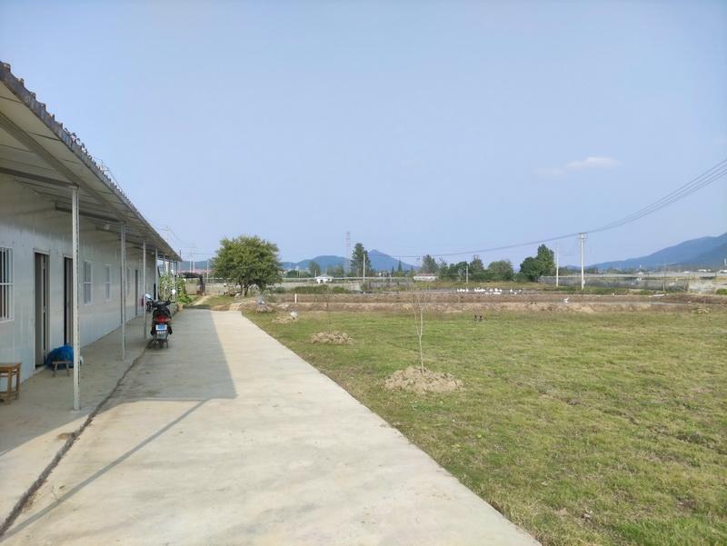 宏福黑斑蛙养殖基地办公区