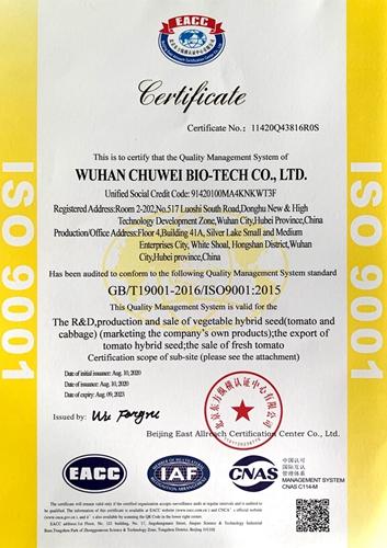 ISO认证英文