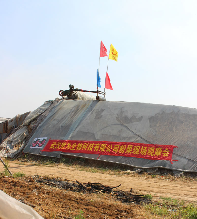 Shouguang,Shandong