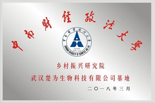 中南财经政法大学乡村振兴研究院