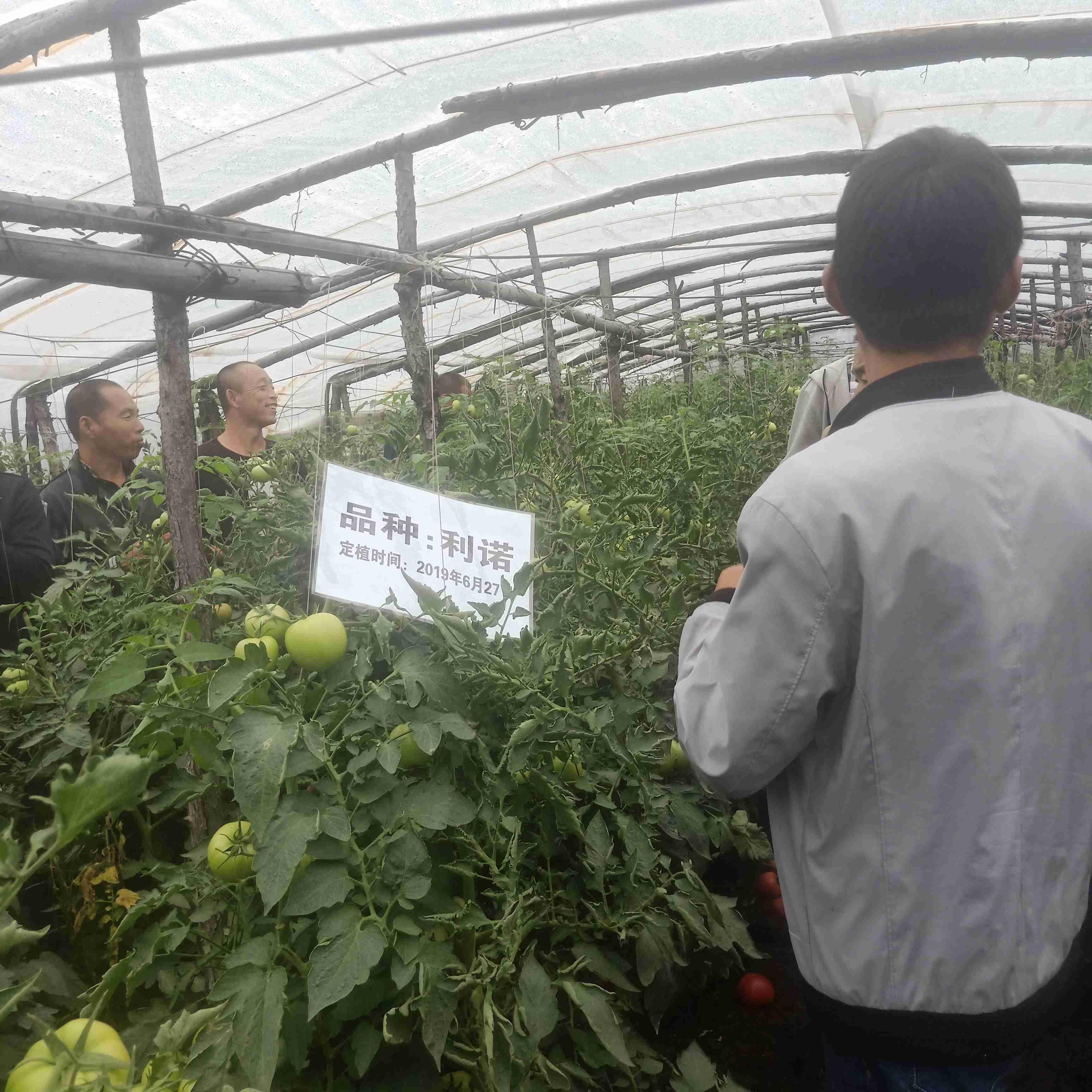 Jilin Fuyu Linuo Observation Meeting