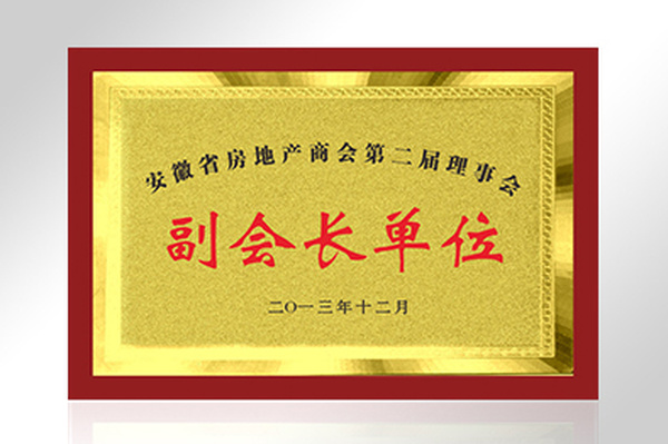 安徽省房地产商会第二届理事会副会长单位