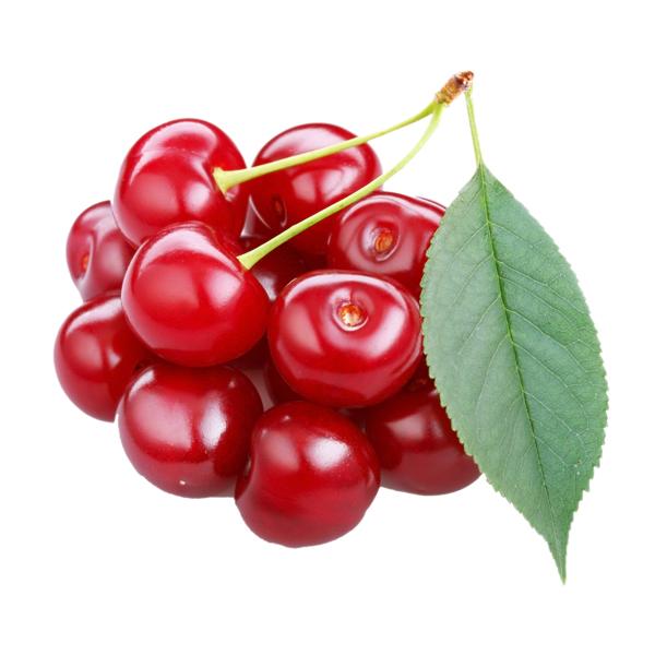 智利进口J级红樱桃