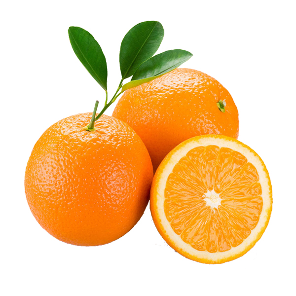 天府橙都湖北脐橙