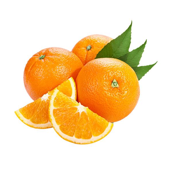 天府橙都四川丑柑柑橘