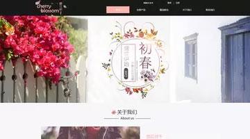 上海网站建设公司个性网页设计模板