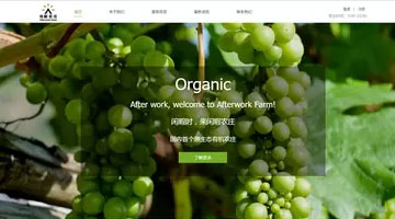 organic上海网站建设公司设计的模板