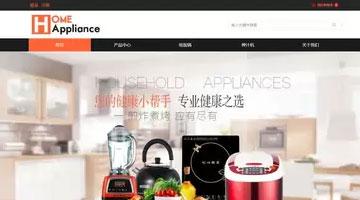 您的小帮手,专业健康之选模板上海网站建设公司创设样例