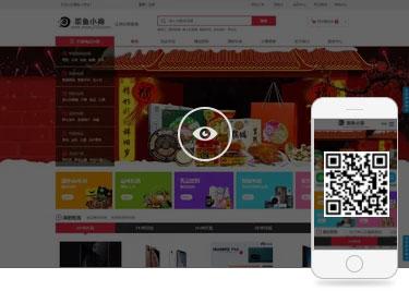 B2B上海网站建设案例