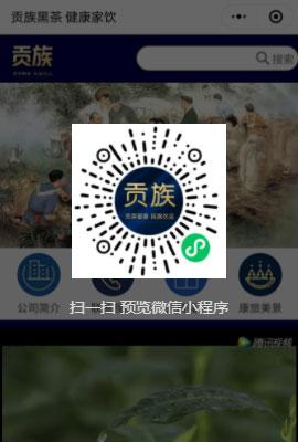 上海网站建设公司制作的小程序展示