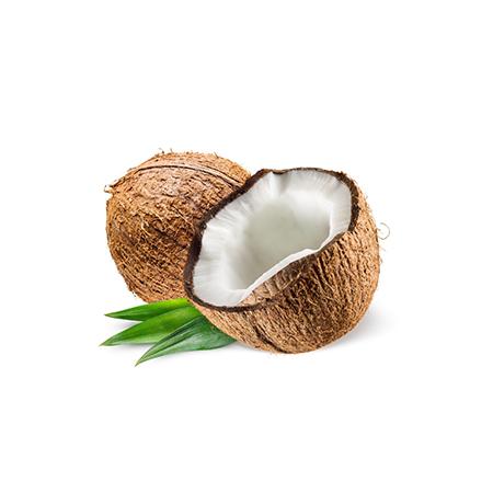 (复制900109)Coconut