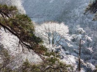 季节特色——冬