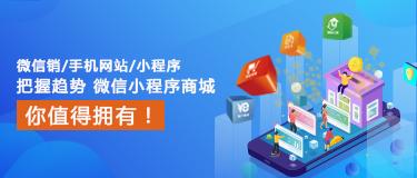 西安网上商城建设