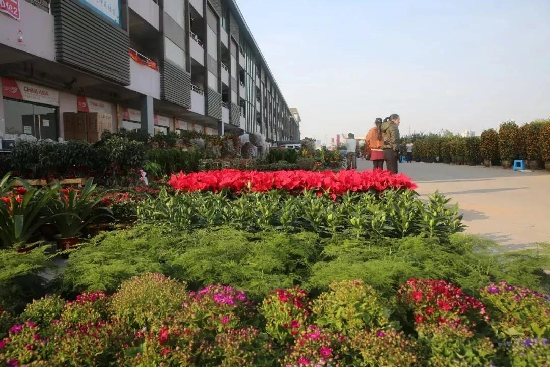 2020年沙井街道迎花市,在中亚硅谷海岸举行